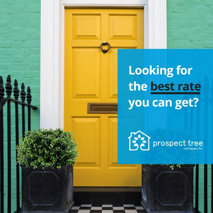 Prospect Tree Mortgages –  Are you looking for the best rate you can get?