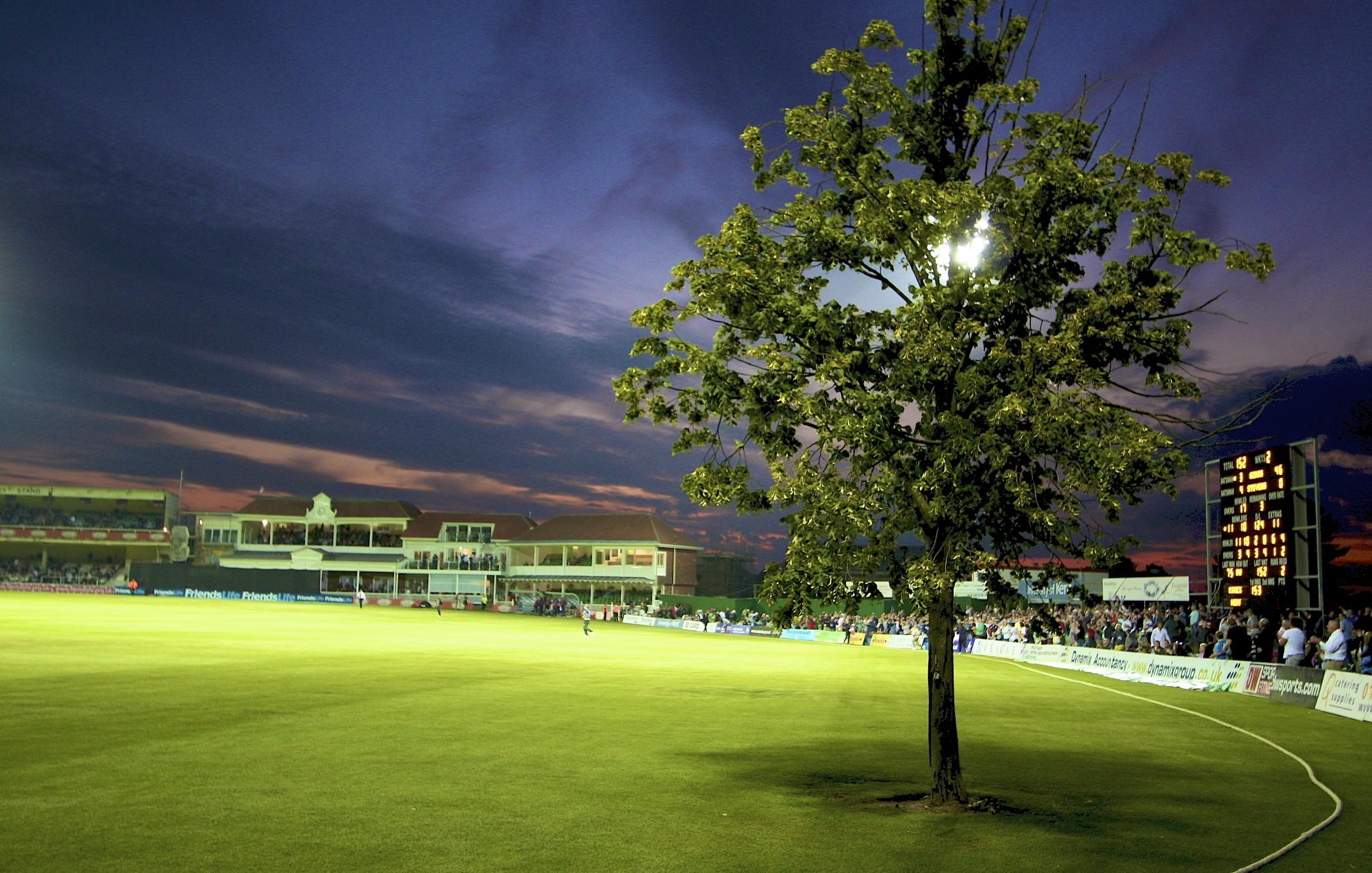 Kent Cricket S Lime Tree Legend Kent Cricket